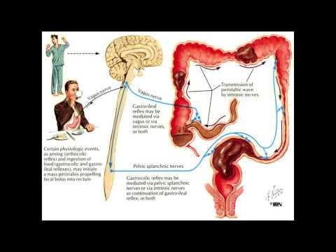 5 Ways to Deal with Constipation - IsaFYI ANZ