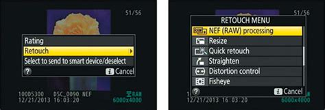 How to Process Raw Images in Your Nikon D5300 - dummies